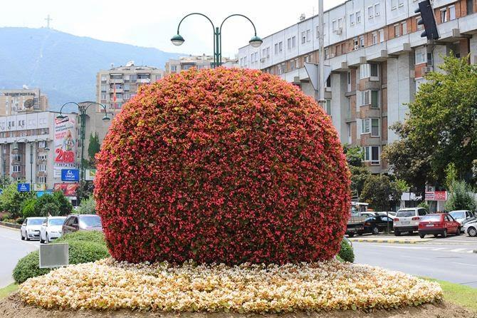 Ohne kommentar der neue blumen ball am boulevard vmro for Lumens boulevard
