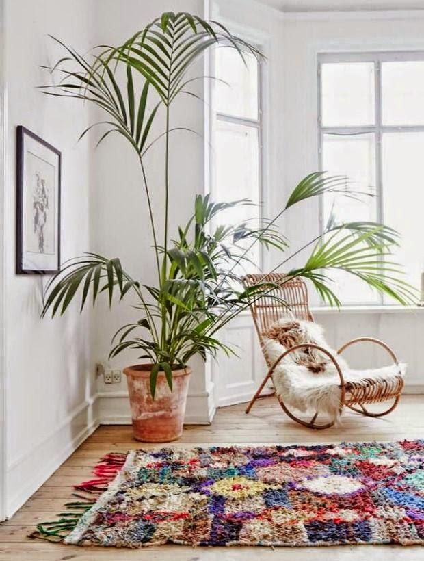 La fabrique d co plantes g antes dans la maison une for Acote salon boston