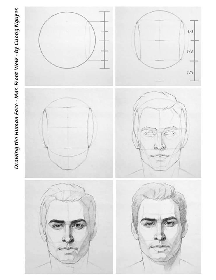 Line Drawing Human Face : Luyện thi khối h v học cách vẽ người p