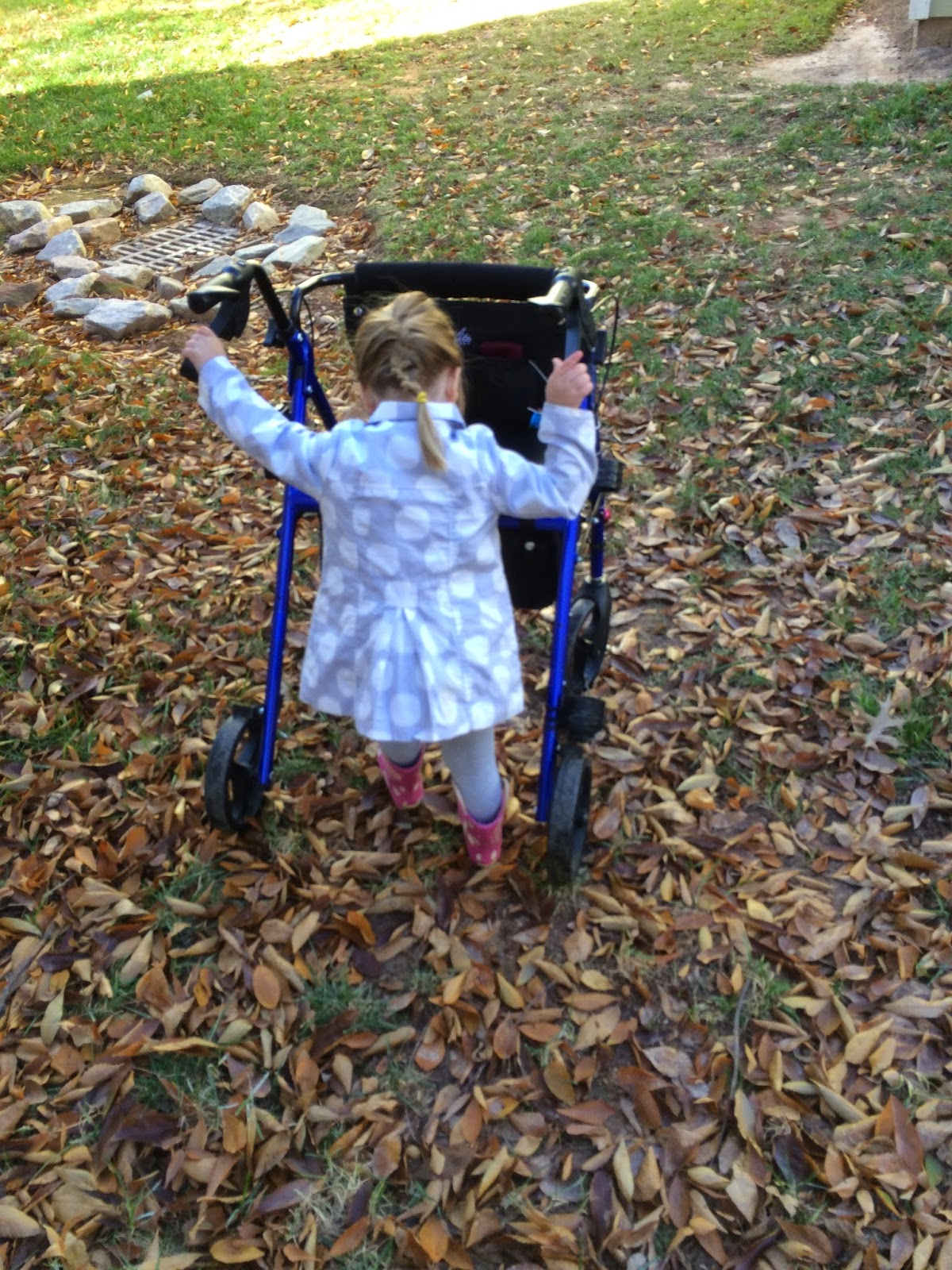 Photograph: A three-year-old girl in a polka dot coat and pink boots pushing a rollator walker through a pile of leaves.