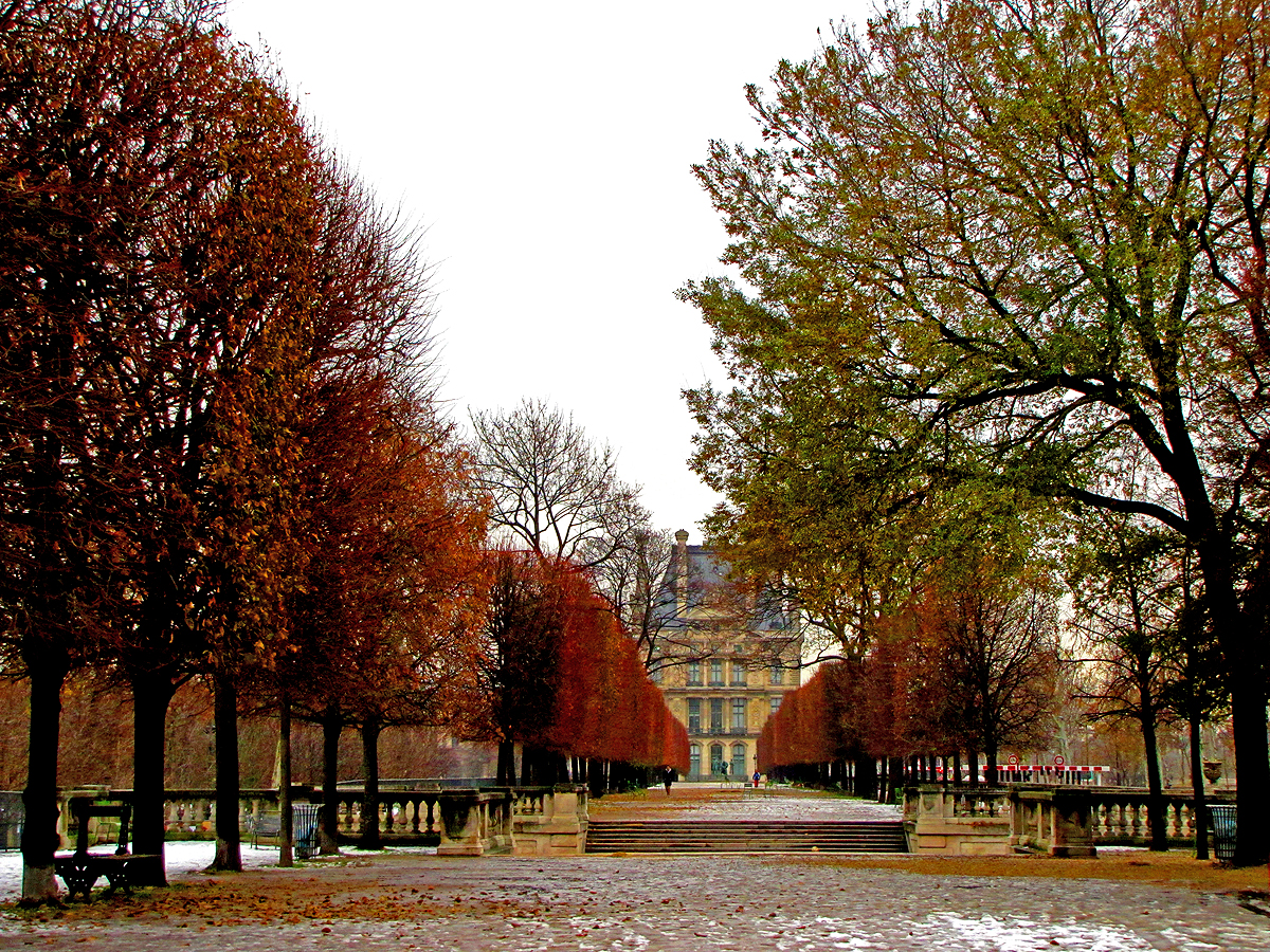 Jardins des tuileries tumblr for Jardin des tuilerie