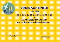 Reconocimiento de Vides Sur ONGD