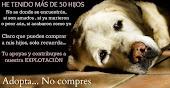 ADOPTA ...NO COMPRES.