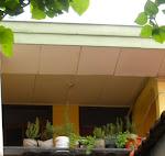 Rooftop Herbs Garden