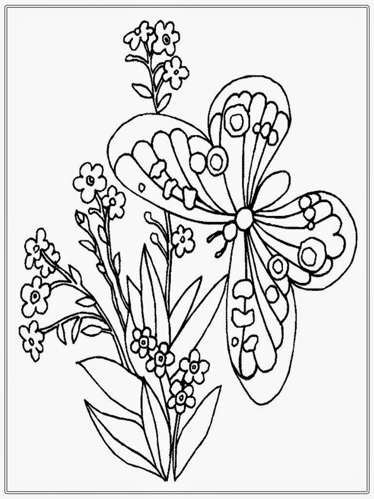 realistic butterflies coloring pages - photo#10