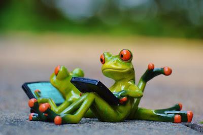 Ergonomisch bloggen: een mens is geen soepele kikker