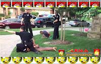 http://revistalema.blogspot.com/2015/12/jovenes-de-color-abusados-bajo-el.html