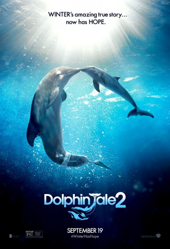 1000 images about Winter  Hope on Pinterest  Dolphin Tale