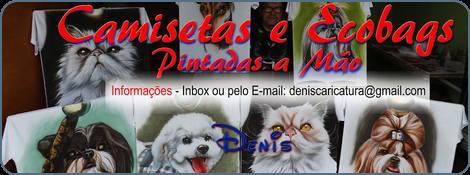 Camisetas, Ecobags e Telas pintadas a mão por Denis Basílio