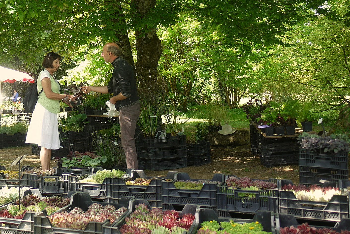 Chateau neuvic plant fair for Gardening tools for 3 year old