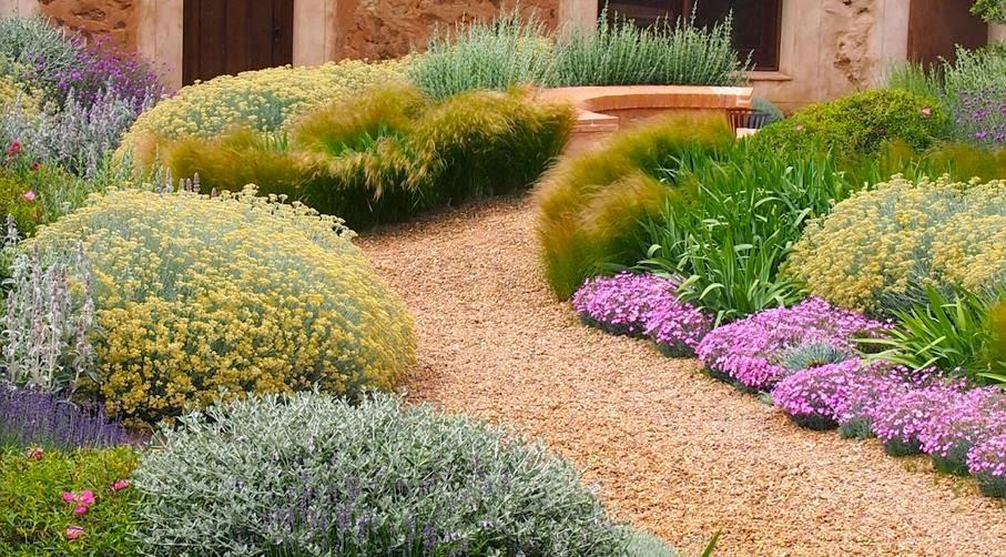 plantas jardim mediterraneoJardim de Stefania  Jardim mediterrâneo