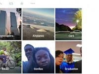 Google Photo Sebut Pasangan Berkulit Hitam Sebagai Gorila