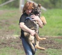 Lány vakvezető kutyával