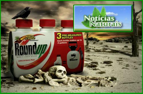 [Imagem: Monsanto-Glifosato-e-o-Mercado-da-Morte.jpg]