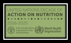 UN Decade of Action on Nutrition