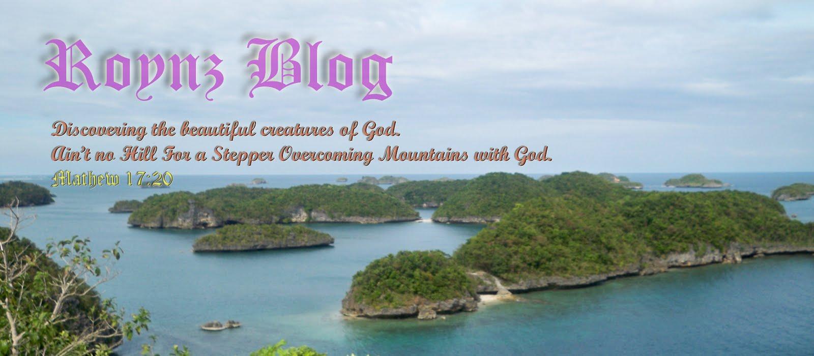 Roynz Blog