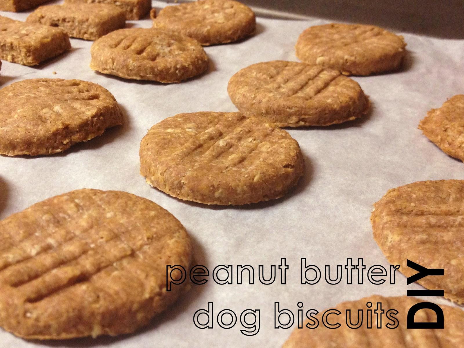 we have chemistry together dog biscuits