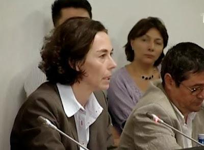 Andreea-Schaechter-FMI-la-Parlament