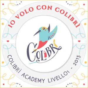 Ho volato con la Colibrì Academy