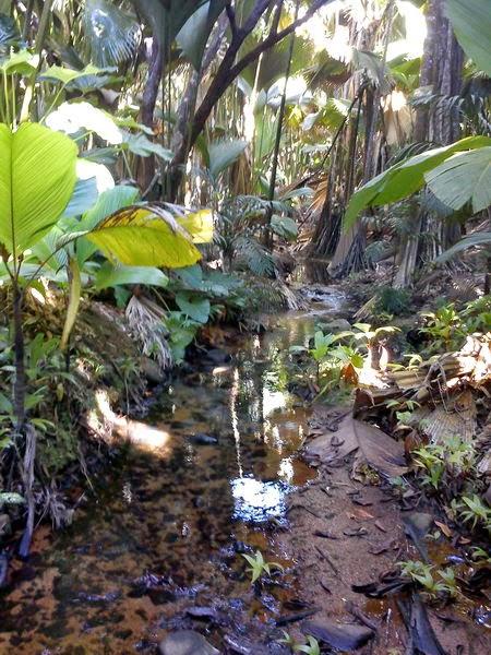Εξωτικά Νησιά. Καιρός να λογικευτούμε… πάμε για τρέλες στις Σεϋχέλλες! Seychelles Mahe Pralin Island exotic