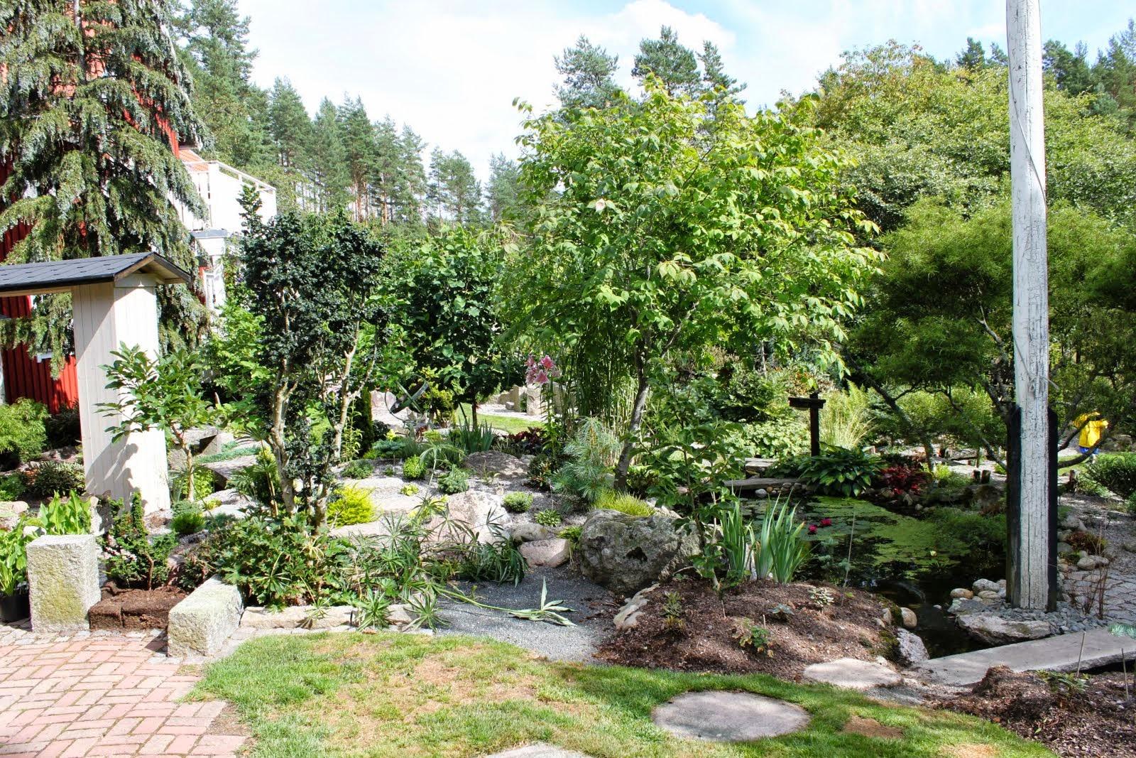 Mina trädgårdar: augusti 2014