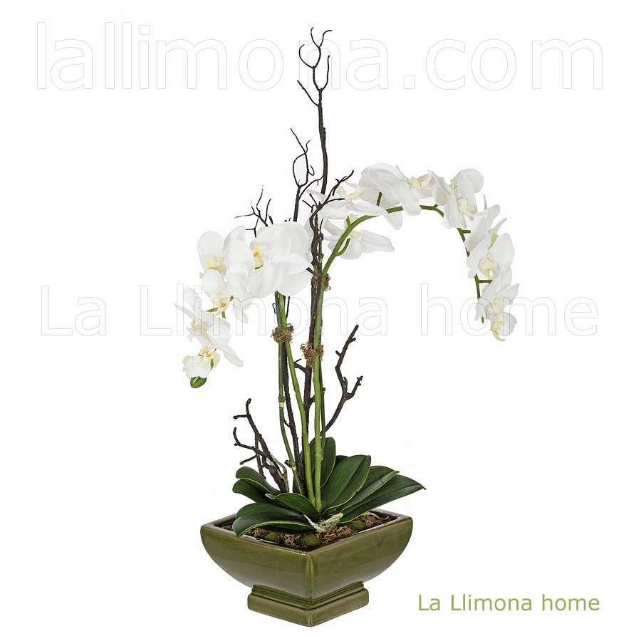 La llimona enero 2015 for Orquideas artificiales
