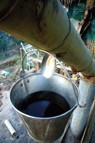 Samuel Lalroz 226 Ma Hmar Mizo Tinreng Damdawi Wood Vinegar