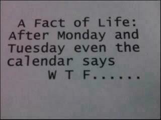 True life fact