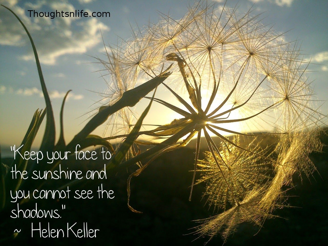 "Thoughtsnlife.com: ""Keep your face to the sunshine and you cannot see the shadows.""   ~   Helen Keller"