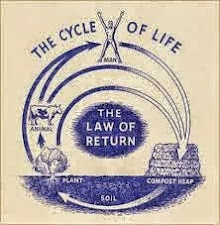 The Cycle of Life - The Law of Return