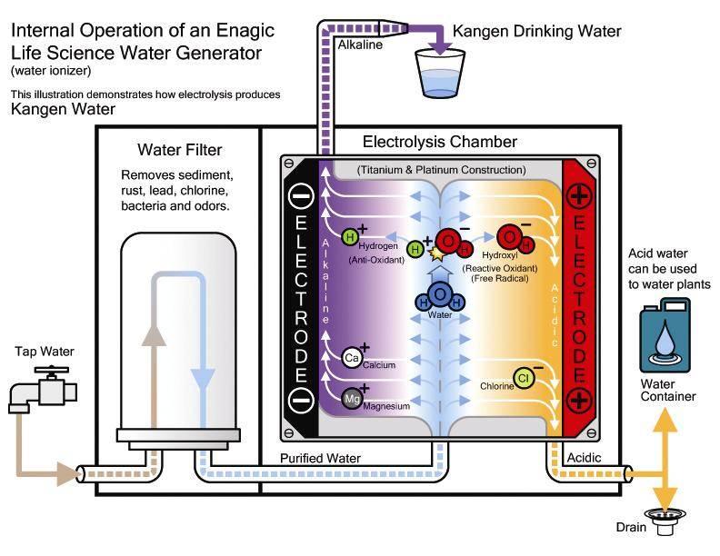 Kangen water review