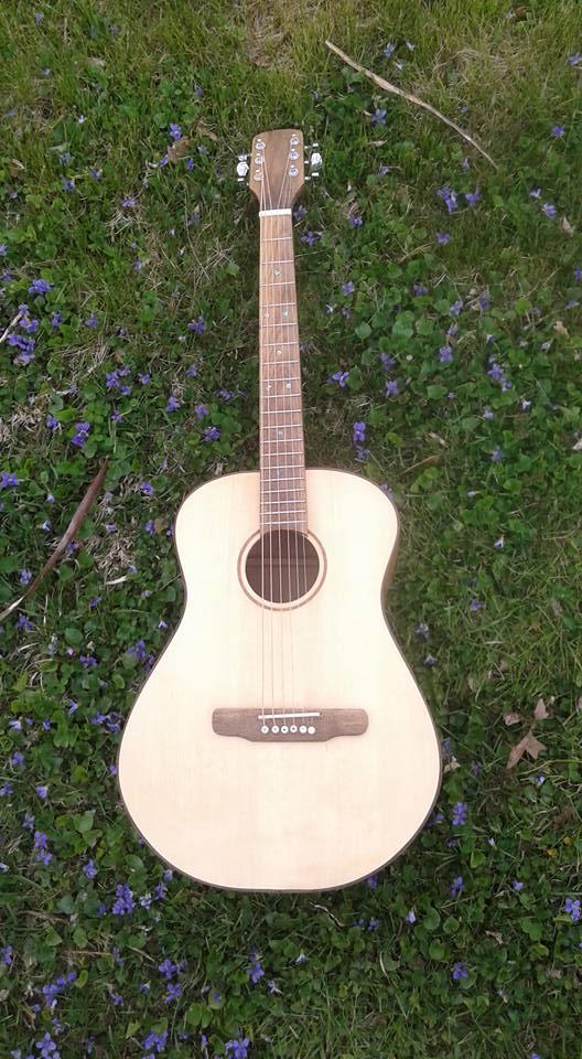Guitar #5