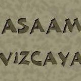 http://www.asaam-bizkaia.org/