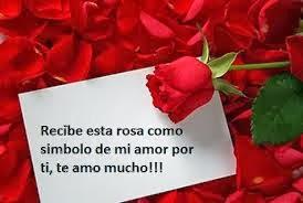 Frases De Amor: Recibe Esta Rosa Como Símbolo De Mi Amor Por Ti