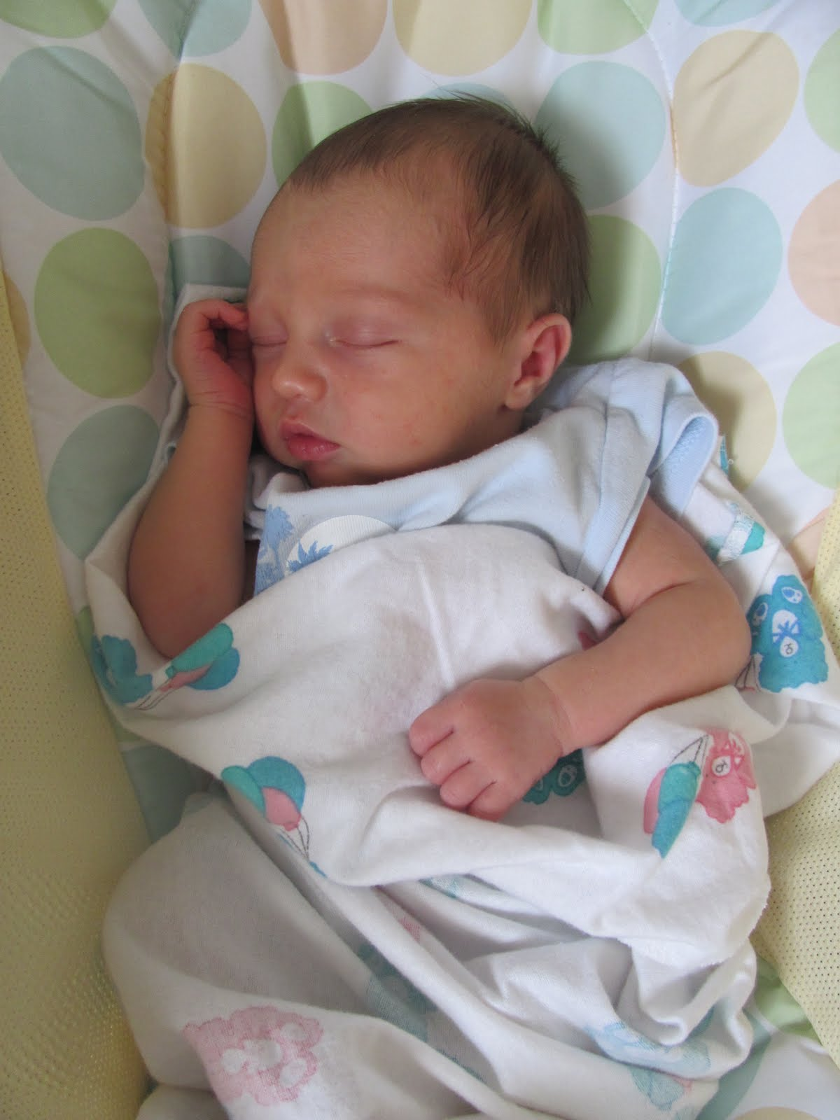 1 2 Day Old Baby Boy Pictures to Pin on Pinterest - PinsDaddy