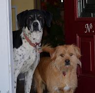 Koda & Max
