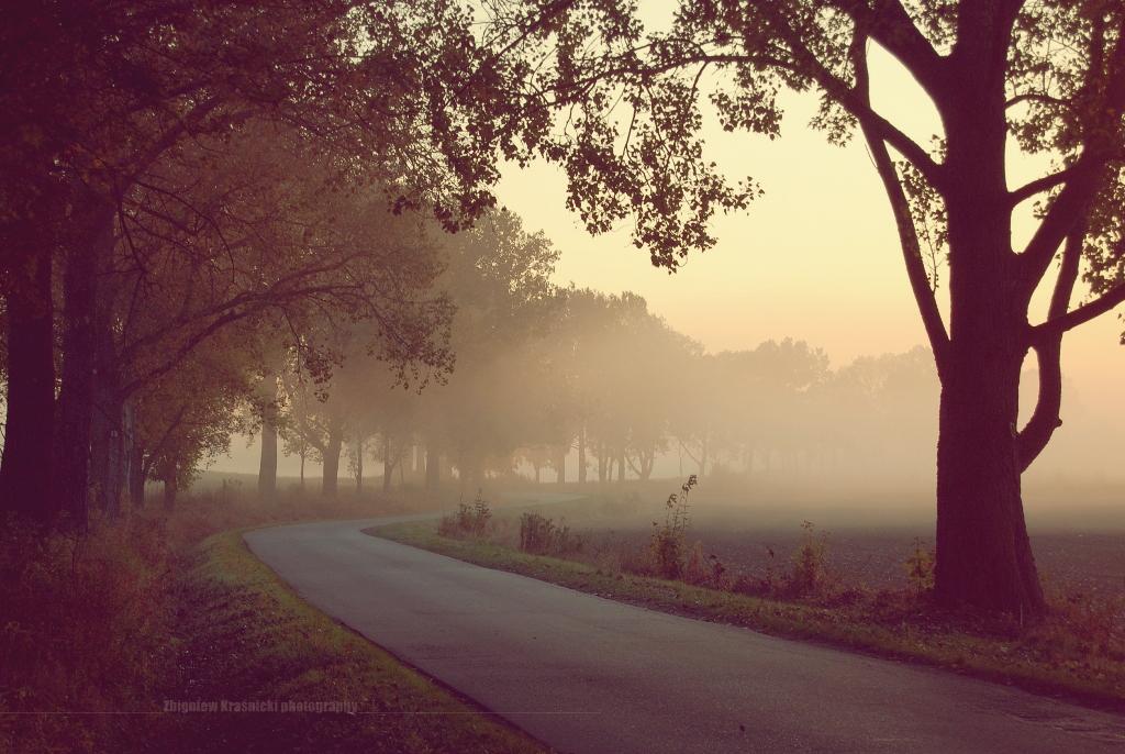 Tomaszkowo skąpane we mgle i o tym, że Olsztyn nie leży na Mazurach