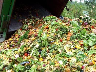 limbah rumah tangga untuk kompos