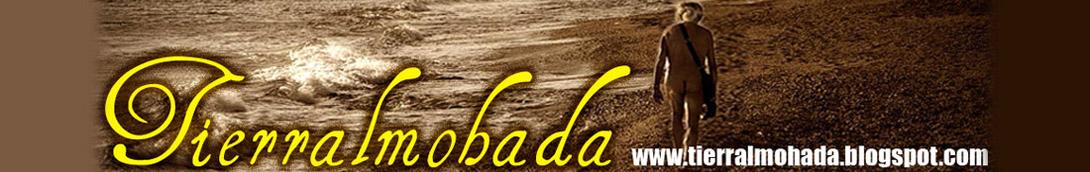 Tierra Almohada