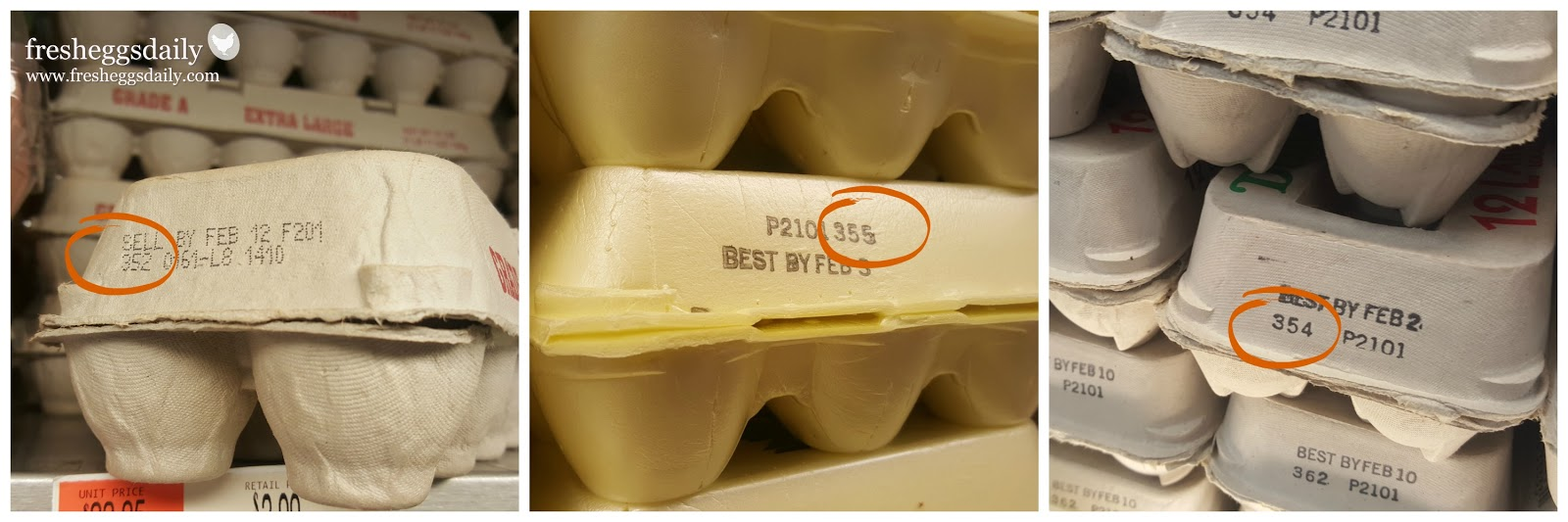 egg carton code dating Code dates: egg processors  expiration dates can be no more than 30 days from the day the eggs were packed into the carton another type of code dating used.