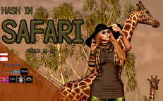 Hash in Safari - March Round