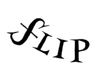 X Festa Literária Internacional de Paraty, Flip