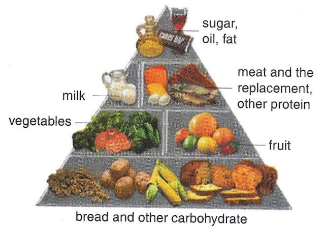 ... Balanced+Nutrition+(PUGS)-Food+pyramide+as+a+descreption+of+balance