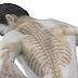 Pequenas fraturas na coluna causam dor torácica