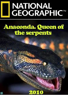 Trăn Nam Mỹ: Chúa Tể Các Loài Trăn - Anaconda : Queen of the Serpents
