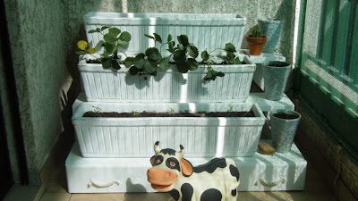 Horta na varanda versão 1.1