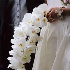 Bouquets de Novias Blancos, parte 5