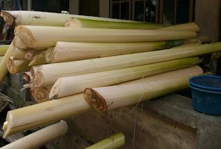 Manfaat batang pisang sebagai makanan sambilan untuk ayam