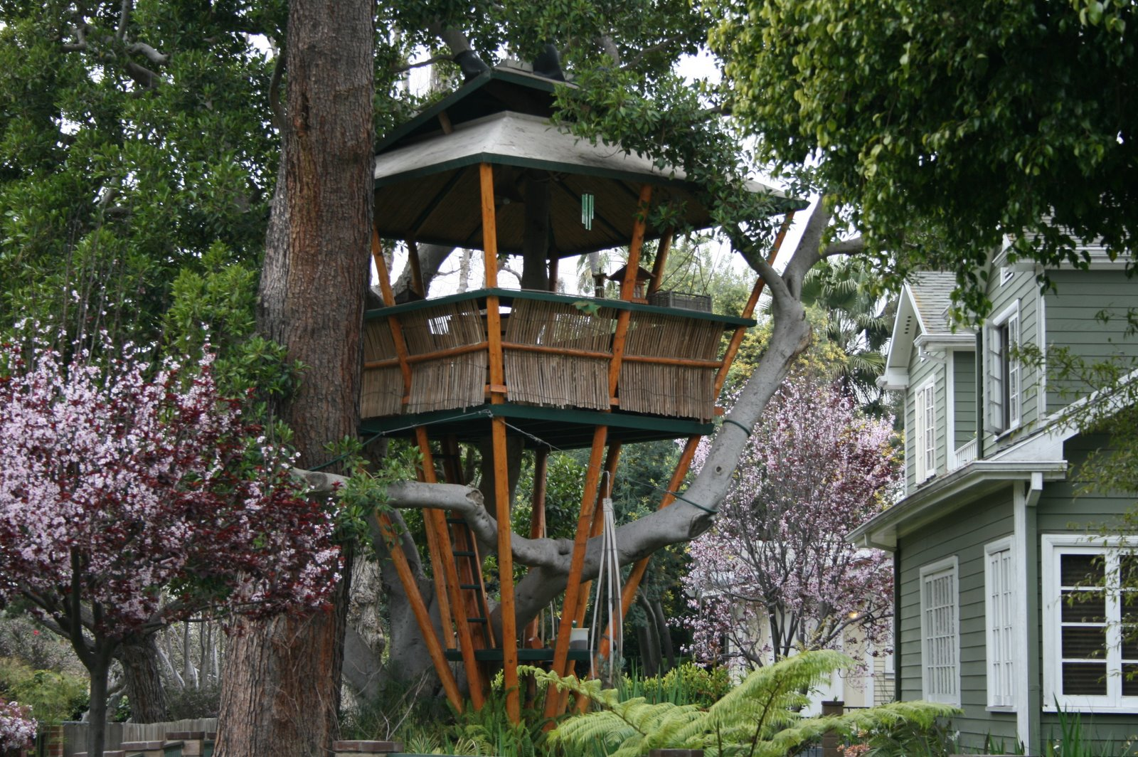 Top 20 beautiful and amazing tree house wallpapers pics for Tree house ideas plans