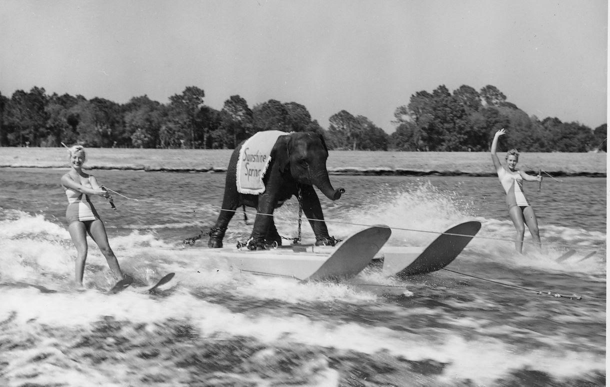 Vintage Water Skiing 57